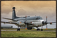 Germany - Navy – Breguet  1150/Elint Atlantic 6103