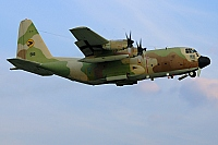 Israel - Air Force – Lockheed C-130E Karnaf   316