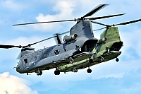 Netherlands - Air Force – Boeing CH-47F Chinook D-892
